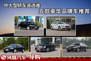 五款豪华品牌车