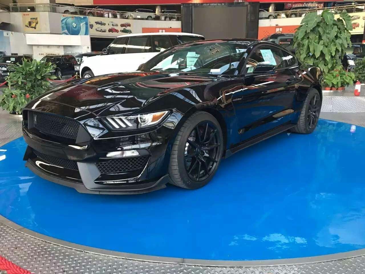 16款福特野马Shelby眼镜蛇 黑色跑GT350高清图片