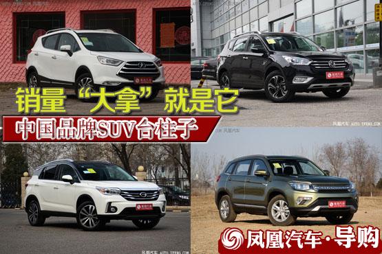 中国品牌SUV台柱子
