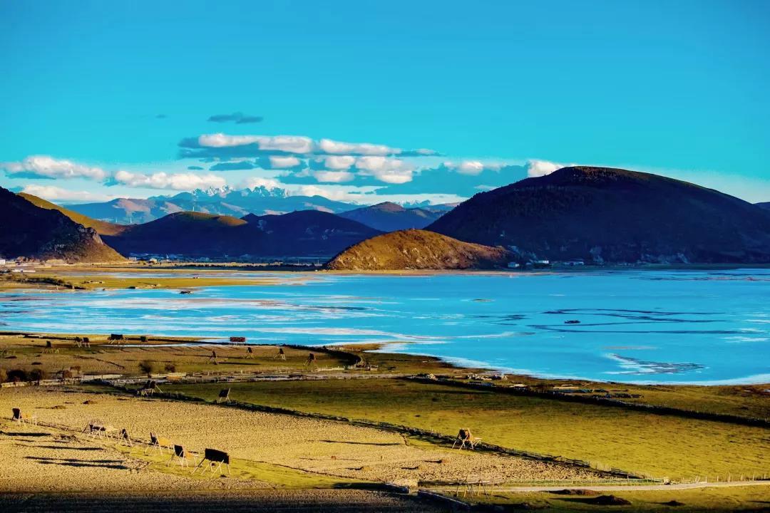 东南区全新bmw x5香格里拉藏地探越之旅_凤凰网汽车