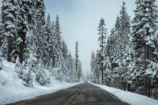 關于冬季,南北方原住民互不理解的痛